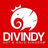 Divindy